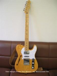 Fender Japan Thinline